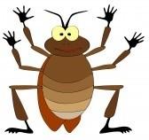Les blattes et les cafards sant - Dessin de cafard ...