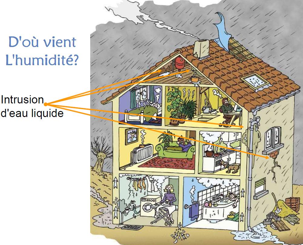 Humidité Dans Une Maison l'humidité d'infiltration - santé-habitat.be